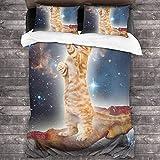 Juego de sábanas de 3 piezas con cierre de cremallera y diseño de gato con estrellas (1 juego de funda de edredón, 2 fundas de almohada) C10172