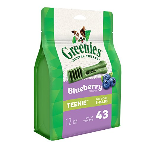 GREENIES TEENIE Natural Dog Dental Care Chews Oral Health Dog Treats Blueberry Flavor 12 oz Pack 43 Treats