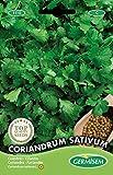 Germisem Coriandrum Sativum Semillas de Cilantro 10 g, EC1110
