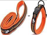 Vivi Bear <span class='highlight'>Dog</span> Collar <span class='highlight'>and</span> Lead Set Padded Soft Breathable Mesh <span class='highlight'>Dog</span> Collar With 3M Night Reflective Stripes Adjustable Collar For Small/Medium/Large <span class='highlight'>Dog</span>s, Pack with 0.6