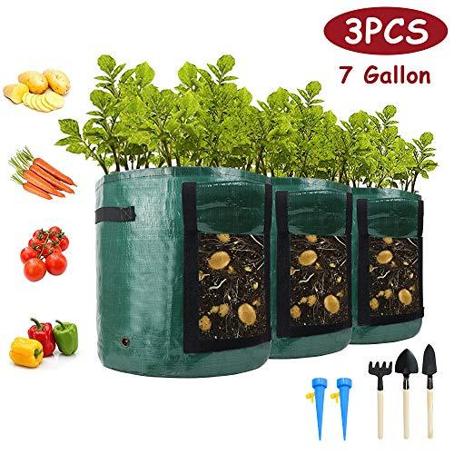 3 Stück Pflanzsack, 7 Gallonen 3x31.8L Recycelbar Pflanze Wachsende Tasche mit Sichtfenster und Griffen, Pflanzbeutel für Kartoffeln, Tomaten und Erdbeeren, Blumen, Automatischer Bewässerungszubehör