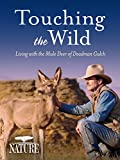 Nature: Touching the Wild: Living with the Mule Deer of Deadman Gulch