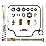 HIFROM Carburetor Rebuild Kit Carb Repair for Honda TRX350 TRX 350 Rancher 4x4 2000-2003 (2000 2001 2002 2003)
