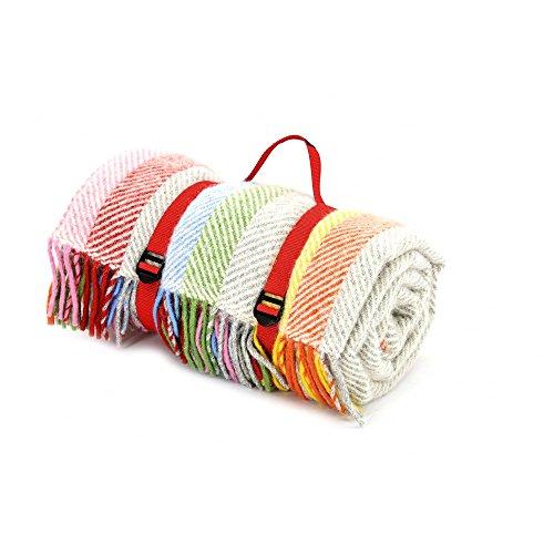 Tweedmill Polo Picknickdecke mit wasserdichter Unterseite–Rainbow Grau gestreift
