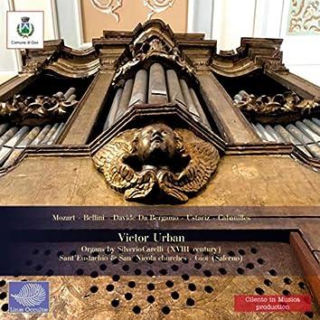 Ancient Organs in Gioi