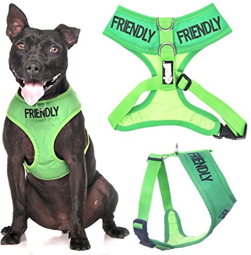 Friendly Dog Harness
