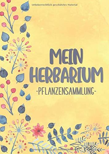Mein Herbarium Pflanzensammlung: Großzügiges Format zur Pflanzenaufbewahrung | mit vorgefertigten Etiketten zur Pflanzenbestimmung | ausreichend Platz für getrocknete Blüten und Blätter | Motiv: Gelb
