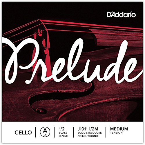 D'Addario J1011 1/2M Cuerda