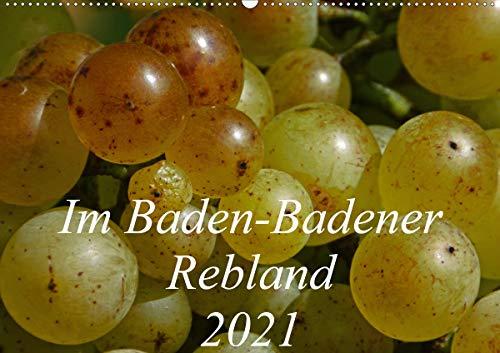 Im Baden-Badener Rebland 2021 (Wandkalender 2021 DIN A2 quer)