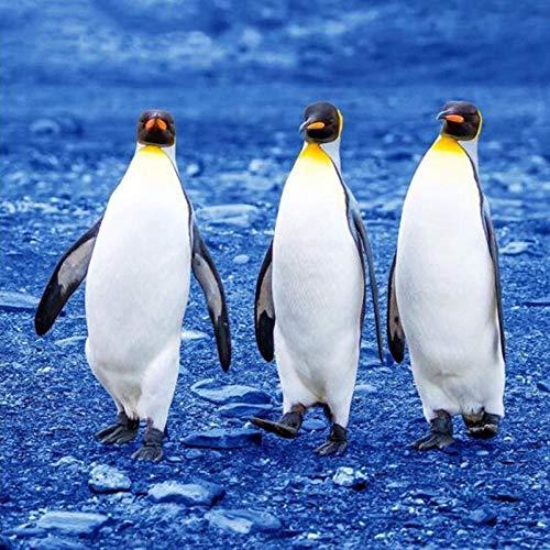 Kit de pintura por números para adultos y niños DIY pintura al óleo digital tres pingüinos lindos animales – lienzo arte de pared decoración del hogar 40 x 50 cm (sin enmarcar)