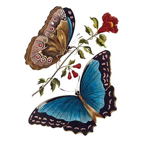 Museum and Galleries Marketing British Library 17,8 cm x 12,7 cm aure Butterfly wenskaart, blauw