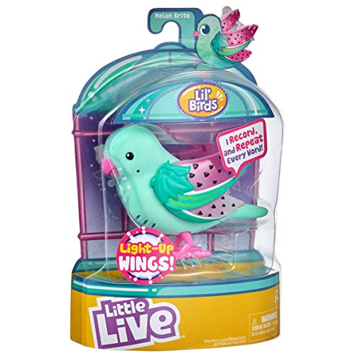 Little Live Pets 28617 Light Up Songbirds S9-estilos varian, colores , color/modelo surtido
