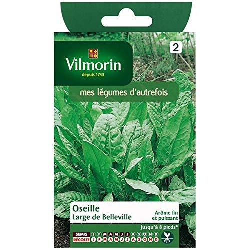 Vilmorin - Sachet graines Oseille de Belleville