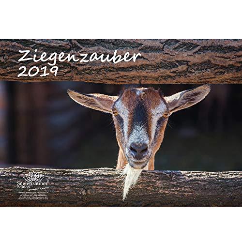 Ziegenzauber · DIN A3 · Premium Kalender 2019 · Ziege · Ziegen · Zicklein · Bauernhof · Natur · Tiere · Geschenk-Set mit 1 Grußkarte und 1 Weihnachtskarte · Edition Seelenzauber