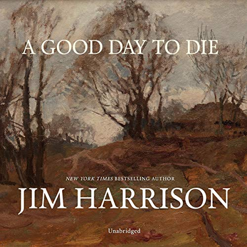 Couverture de A Good Day to Die