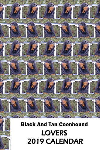 Black And Tan Coonhound Lovers 2019 Calendar