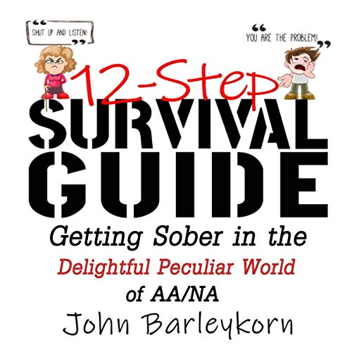 12-Step Survival Guide cover art