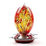 LTHTX - Alimentador de colibrí para exteriores, botella de vidrio, incluye foso de hormiga, gancho S, cuerda de cáñamo, cepillo (fuegos artificiales rojos)