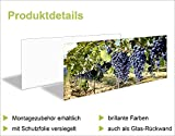 Küchenrück-Wand Artland Küchenspiegel Spritzschutz Hightech-Aluminium-Verbundplatten Eva Gruendemann Nordseestrand auf Langeoog – Steg in verschiedenen Größen und Farben erhältlich - 2