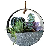 Lily's Home Indoor Wall Hanging Circular Planter for Succulents, Cacti, Herbs, Faux Plants,...