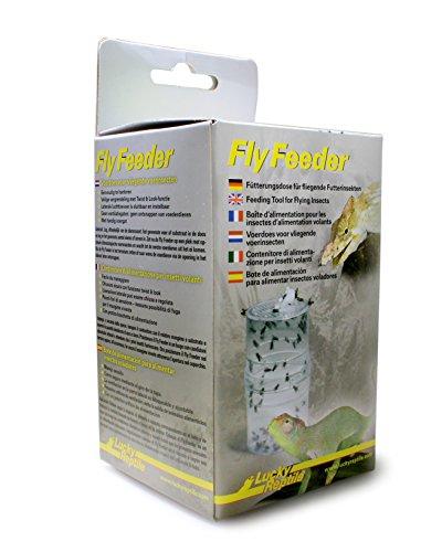 Lucky Reptile Fly Feeder, Fütterungsdose für fliegende Futterinsekten