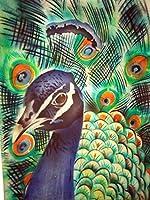 Capiz Shell Airbrushed Peacock Decorative Tray, 12 Inch [並行輸入品]