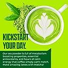 Kiss Me Organics Matcha Green Tea Powder - Japanese Culinary Grade 100% Organic Matcha Powder for Latte Making & Baking - 1 Ounce #2