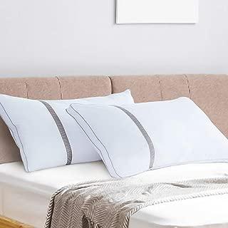Best beautyrest luxury feather pillows set of 2 Reviews