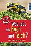 Was lebt an Bach und Teich? Kindernaturführer: 85 Tiere und Pflanzen am Wasser