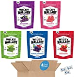 7. Wiley Wallaby Ultimate Fruit Variety Australian Licorice Snack Peak Gift Box (5 - 10 oz bags) – Red, Green Apple, Watermelon, Huckleberry, Blueberry Pomegranate