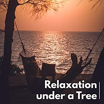 Relaxation under a Tree - Collection of Stunning Sounds of Nature Thanks to Which You Will Rest and Forget about Stress and Troubles
