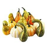 Mini Artificial Pumpkins for Decorating Table Decor Fall Wedding Fall Wreaths Fill Vases, Baskets, Or Cornucopias Autumn Table Vignettes