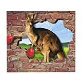 A Kangaroo With A Red Boxing Glove Absorbent Reversible Microfiber Dish Drying Mat For Kitchen 16 Inch X 18 Inch
