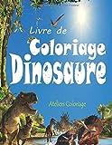 Livre de Coloriage Dinosaure: 40 Dessins Réalistes de Dinosaures pour Garçons et Filles de 4 à 12 ans ; Peinture Magique Dinosaure ; Livre de ... Magique Dinosaure, Coloriage Enfant Dinosaure