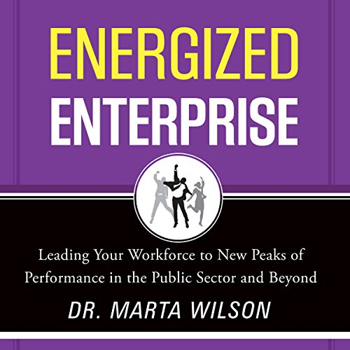 Energized Enterprise audiobook cover art