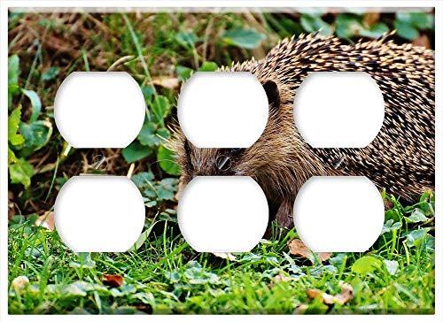 Triple Duplex Outlet Wall Plate Cover - Hedgehog Animal Spur Nature Garden Mammal Hannah 6