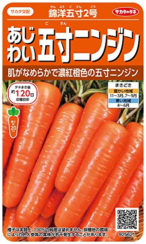 サカタのタネ 実咲野菜5621 あじわい五寸 ニンジン 錦洋五寸2号 00925621