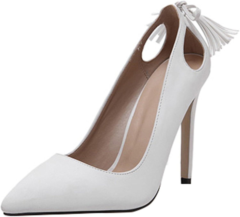 Eclimb Women's Classic Fashion Pointed Toe High Heel Dress Pumps