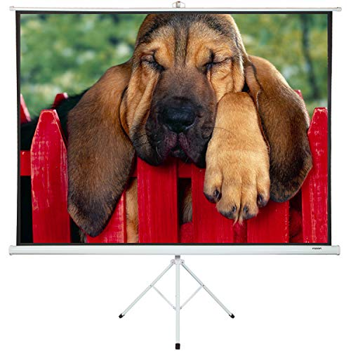 Projector Screen with Stand 100' - Projector Screen Pull Down and Projection Screen with Stand - This Screen is The Best Indoor Movie Screen with Stand - Indoor Screen