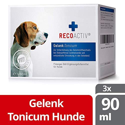 RECOACTIV® Gelenk Tonicum für Hunde 3 x 90 ml, Diät-Nahrungsergänzungsmittel bei Osteoarthritis (schmerzende und entzündete Gelenke), mit Chondroitin, Glucosamin, MSM und Weidenrinde