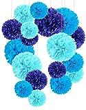 Recosis Papier de Soie Pompons, Boule de Fleur en Papier pour fête d'anniversaire de Mariage Baby Shower de Mariage de Douche Décorations de Festival, Lot de 18 Bleu Ciel, Bleu Royal et Bleu