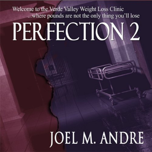Perfection 2 audiobook cover art
