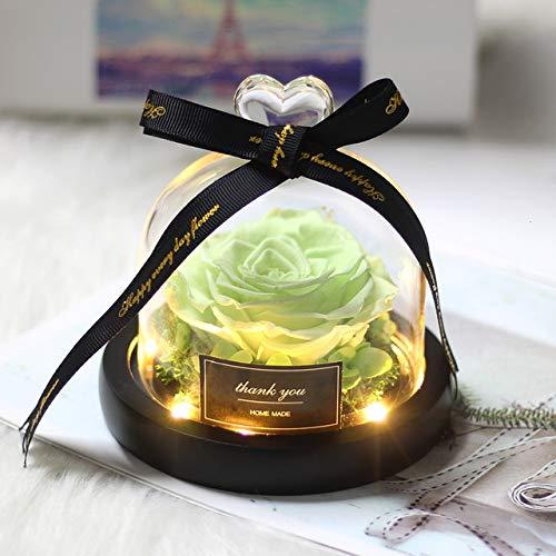TSAUTOP Newest Schöne und das Biest Konservierte Valentines Exclusive In Glaskuppel mit Lichtern Ewige Echt Rose Flower Weihnachten Geschenk (Color : 01)