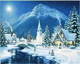Pintura por números en lienzo invierno DIY pintura acrílica sin marco decoración del hogar para colorear por números paisaje para adultos regalo único W9 30x40cm