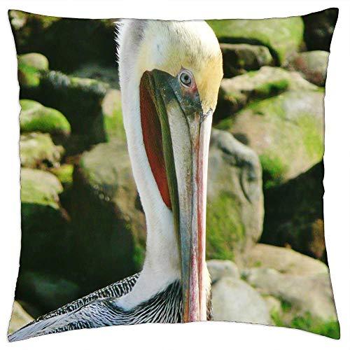 LESGAULEST Throw Pillow Cover (16x16 inch) - Pelican Brown San Diego La Jolla Bird Wildlife