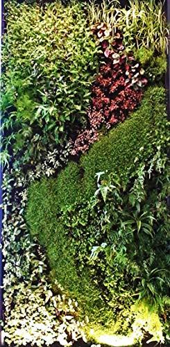 Modulares Wandbepflanzungssystem, lebendige Wand, Wandbegrünung, Pflanzendekoration für Zuhause und Büro, Innen-Dekoration – Pflanzen nicht enthalten