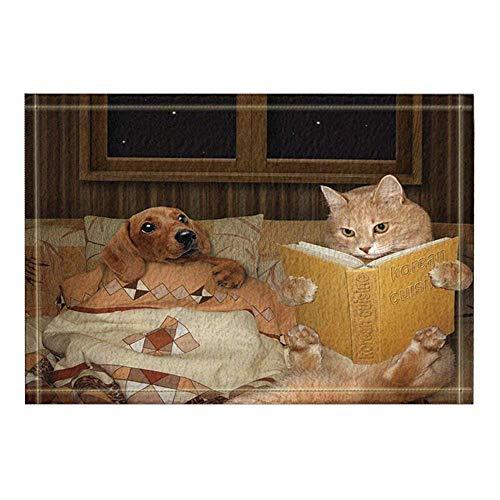 OqgsMindyzk Nachtstern gelb niedlich Hund Katze Quilt gelb Buchgeschichte Gepolsterte und strukturierte Bequeme Starke rutschfeste saugfähig