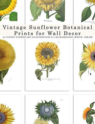Vintage Sunflower Botanical Prints for Wall Decor: Cut-out flower art Illustrations (20 paper sheets)