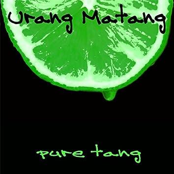 Pure Tang