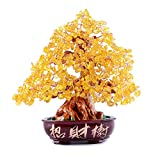 DAMEING Crystal Money Tree Feng Shui Bonsai for Fortune Money...